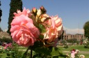 Rose Garden on Aventine Hill - Stefano's RomeCabs